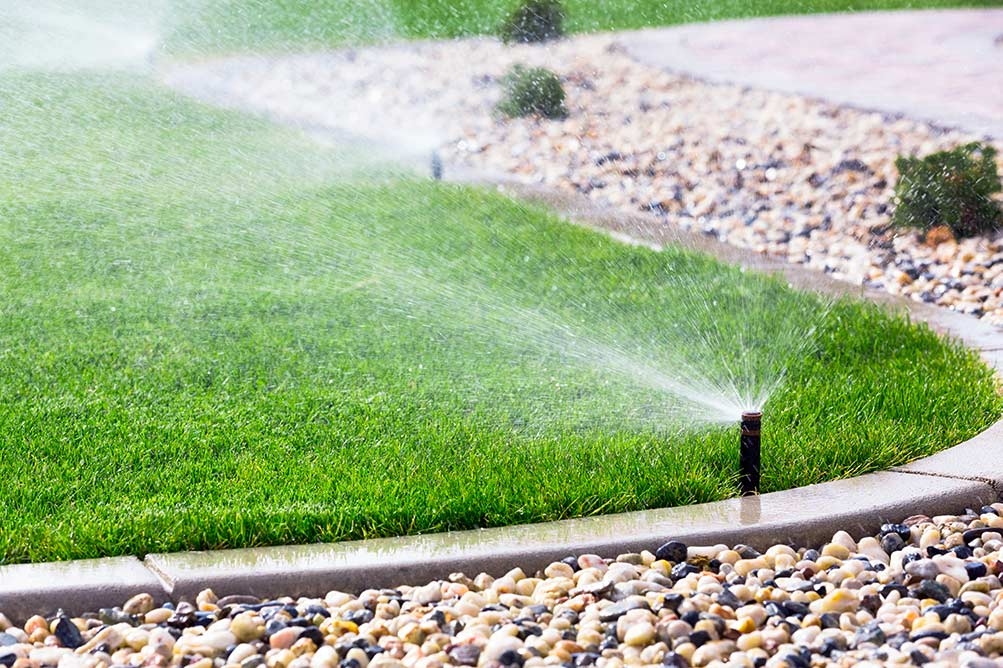 """Featured image for """"Watering Tips for Spring 2021"""""""